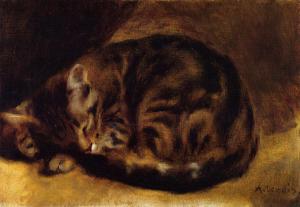 sleeping-cat-1862